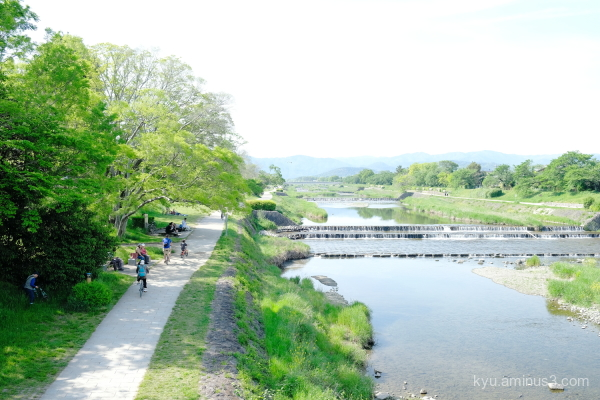 walk Kamogawa Kamo-river Kyoto