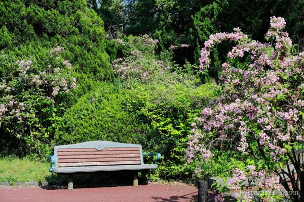 bench botanical garden Kyoto