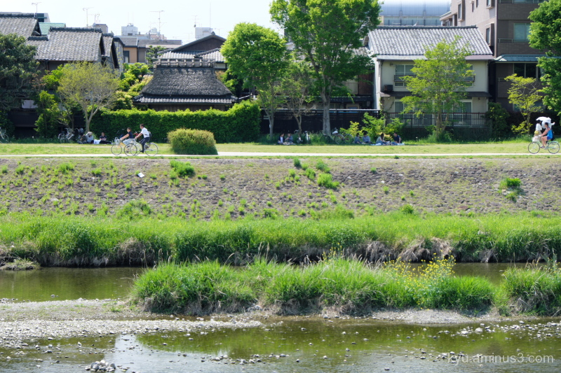 bicyle thached-roof Kamogawa river Kyoto
