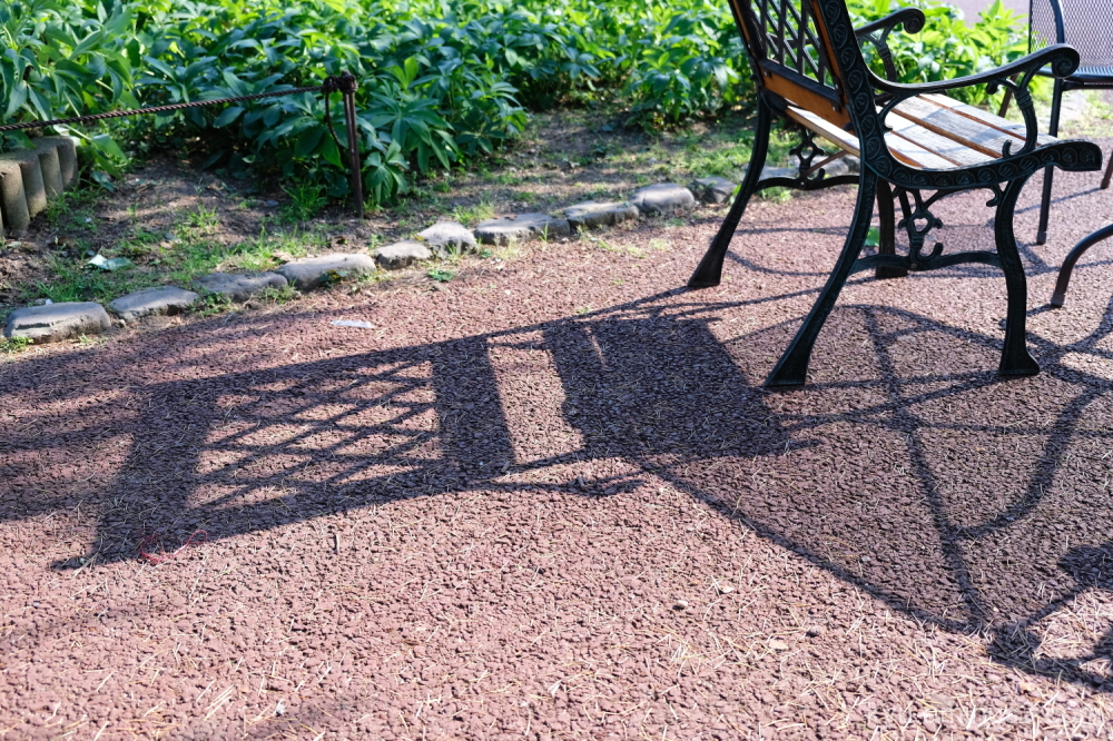 chair shadow Botanical-garden Kyoto