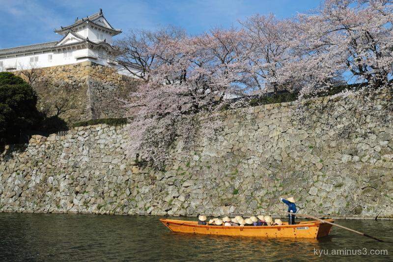 cruising moat cherry-blossoms Himeji-castle Hyogo