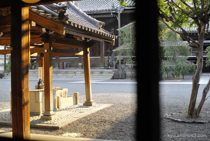 afternoon-light Bukkoji temple Kyoto