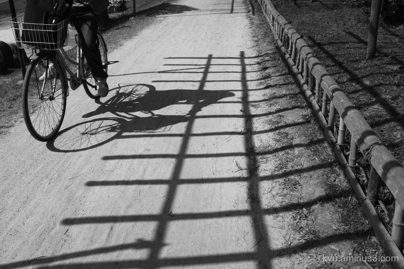 cycling shadow bicycle mono Kyoto