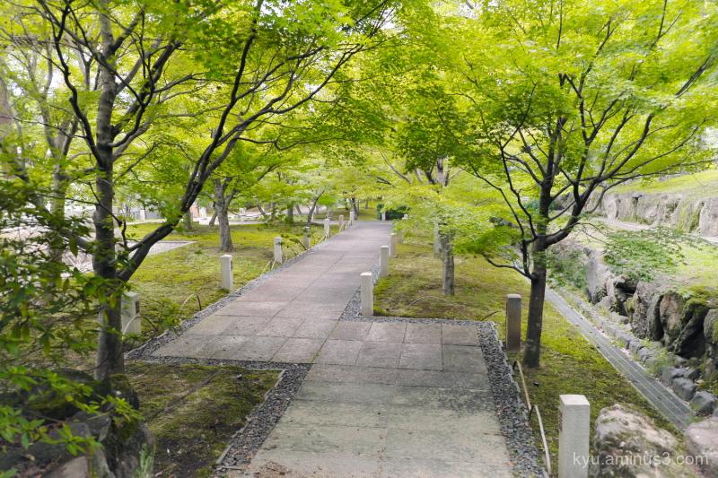 path green-maple Chishakuin temple Kyoto