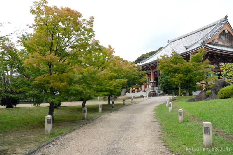 cloudy-sky path Chishakuin temple Kyoto