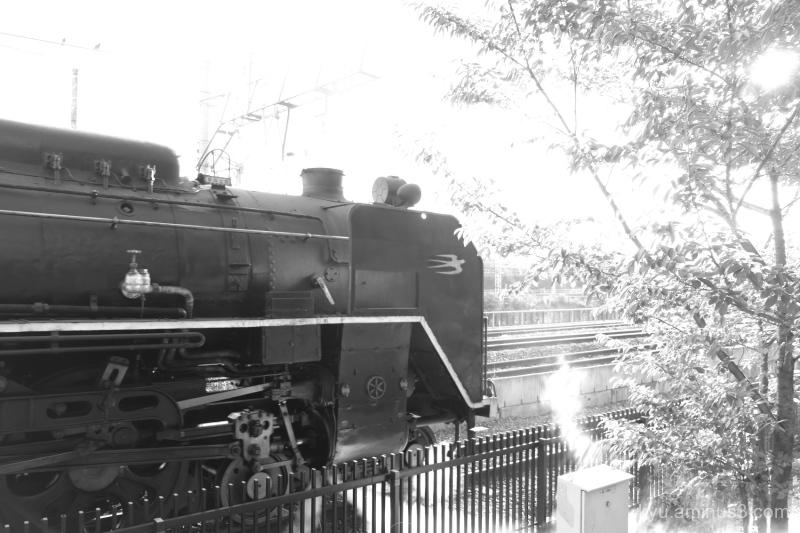 locomotive Umekoji park Kyoto mono