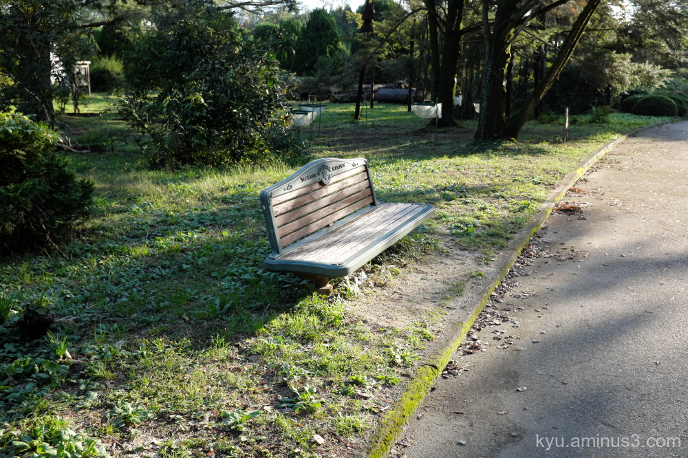 bench botanical-garden Kyoto