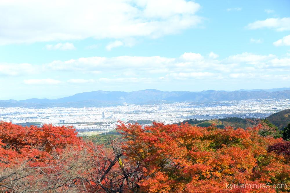 autumn red-maple view Yoshiminedera temple Kyoto