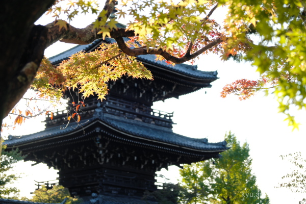 autumn pagoda Shinnyodo temple Kyoto