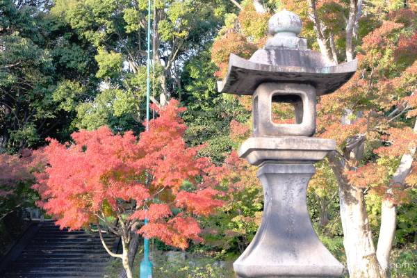 red-maple stone-lantern Chishakuin temple Kyoto