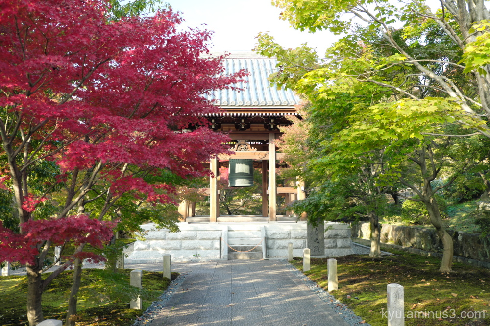 red-maple bell-tower Chishakuin temple Kyoto