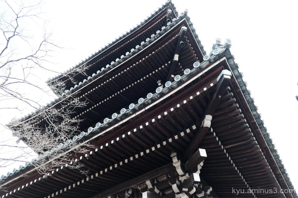 looking-up pagoda Shinnyodo temple Kyoto