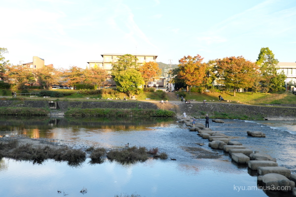 afternoon-light Kamogawa river Kyoto