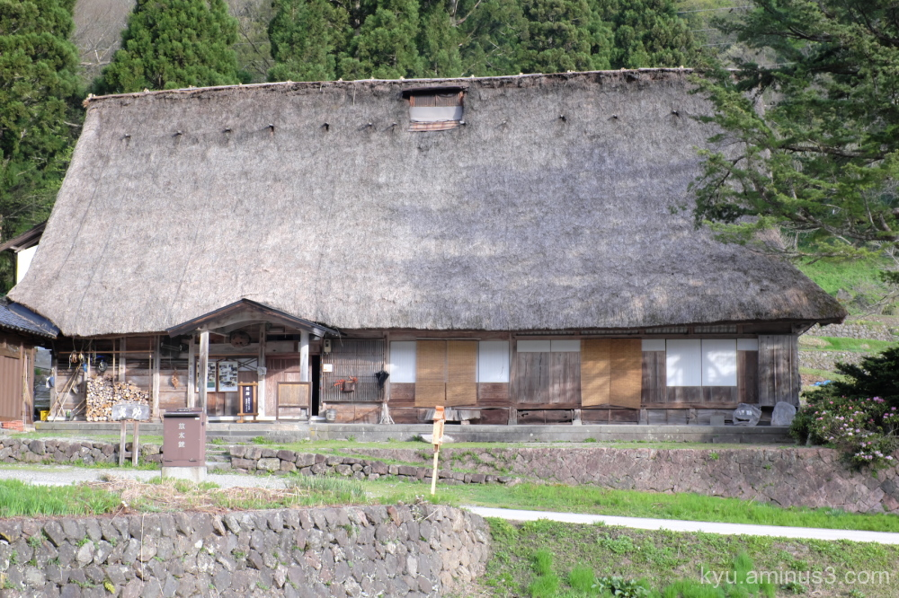 Big thatched-roof house