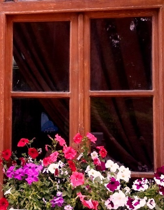window shiraz ordibehesht92 پنجره گل