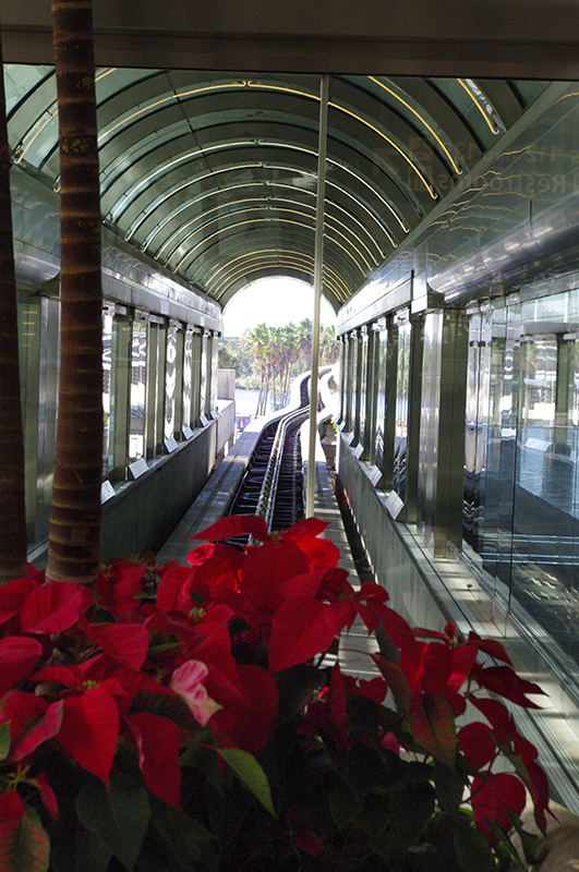 summer,station ,flowers,tracks, Florida,monorail