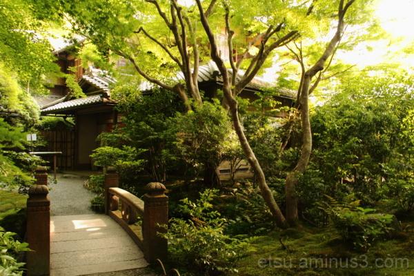 rurikouin 瑠璃光院 kyoto