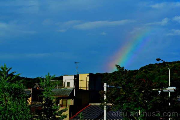 rainbow kamogawa river 虹 鴨川