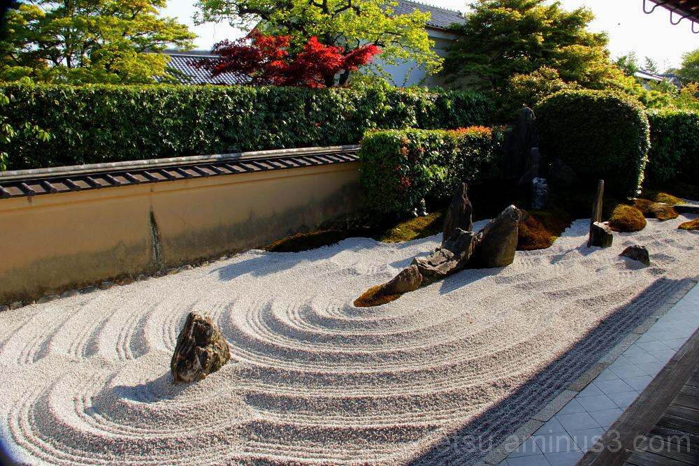 garden in Zuiho-in temple 庭 瑞峯院