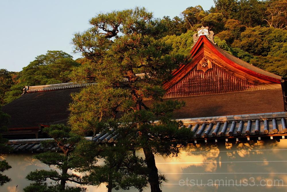 sub-temple in Nanzenji 南禅寺 塔頭