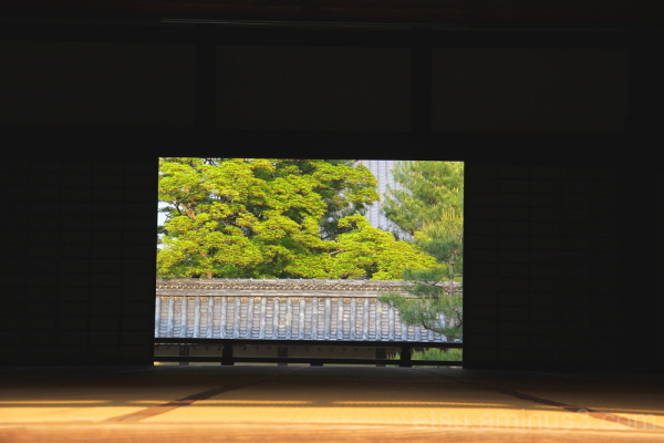 the scenery on the other side of the room  天龍寺