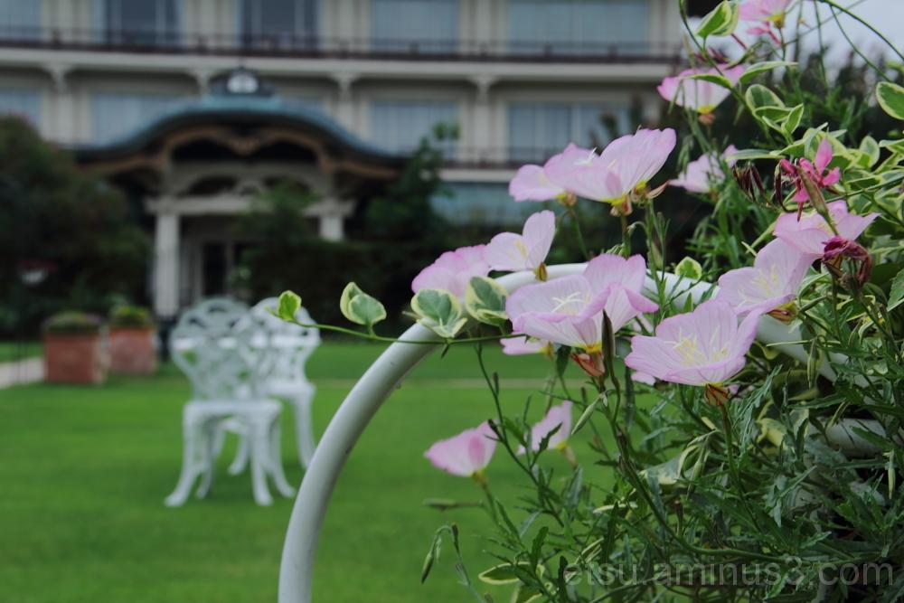 garden in Biwako Otsu-kan 英国風庭 びわこ大津館