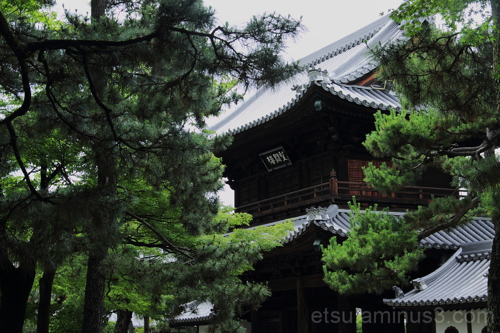 Kenninji temple 建仁寺 山門