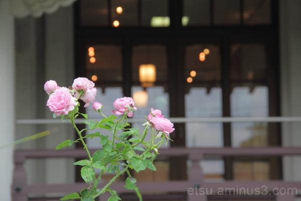 flower and window びわこ大津館