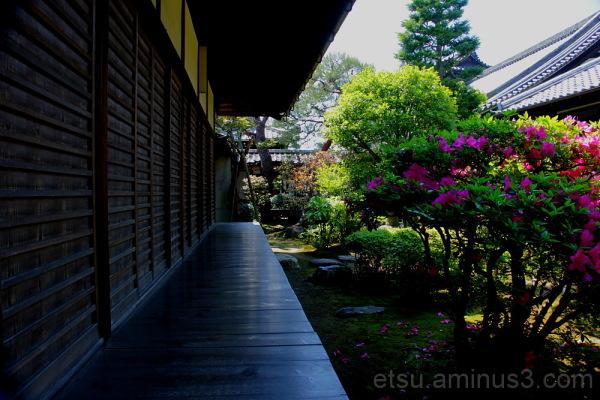 Through the corridor(Chishkuin temple) 智積院