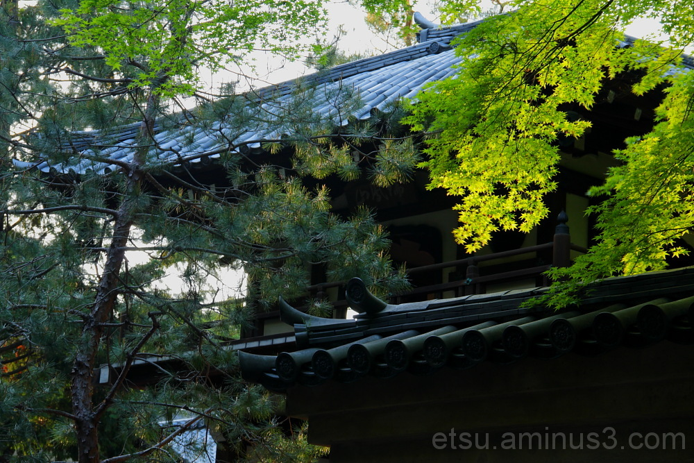 The seminary for the Buddist priesthood 研修道場 大徳寺