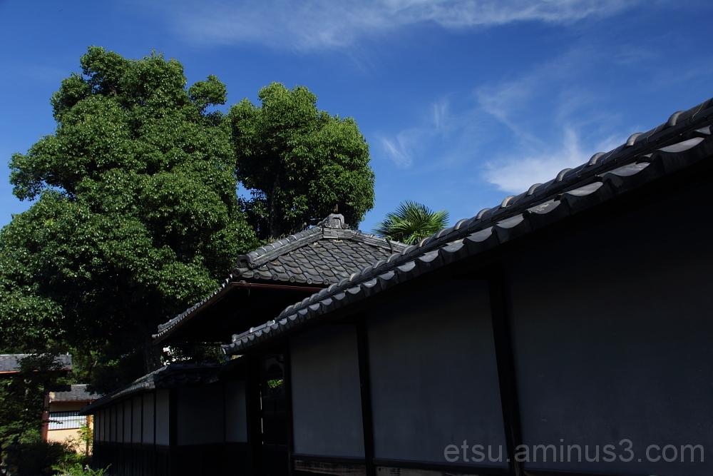 Kikokutei 枳殻邸