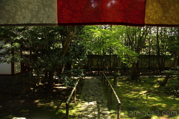 The garden in Rengeji temple 庭 蓮華寺