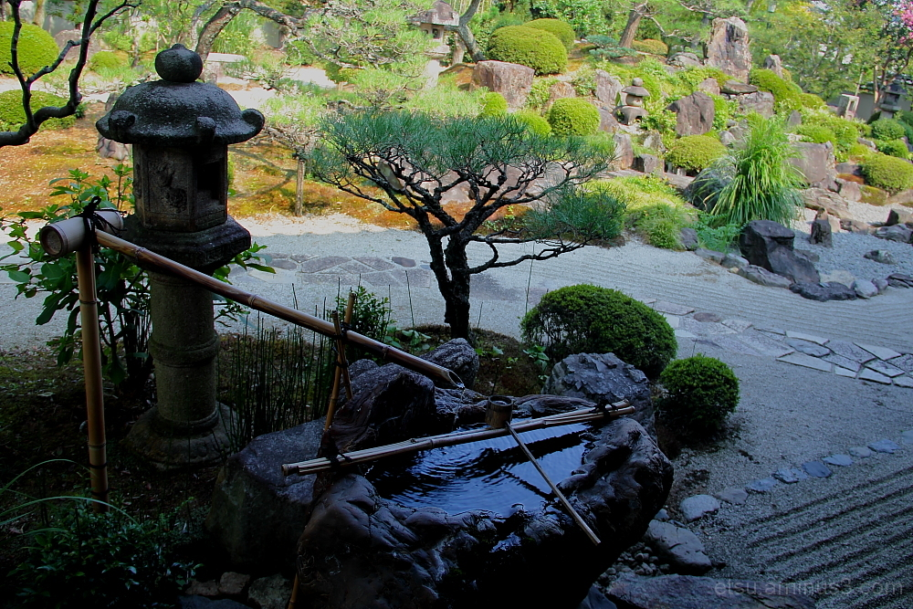 the garden 妙満寺