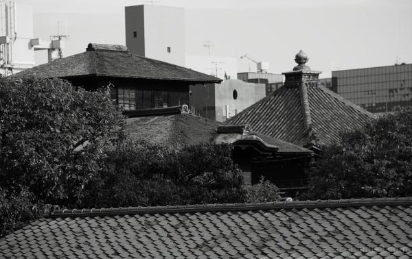 old architecture 西本願寺 飛雲閣