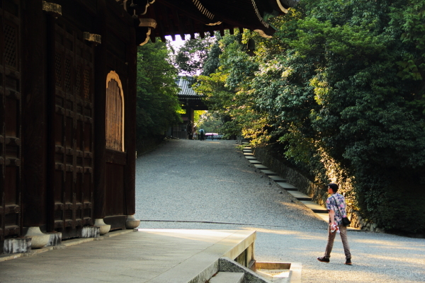 The calm place(near the gate of the temple) 泉涌寺