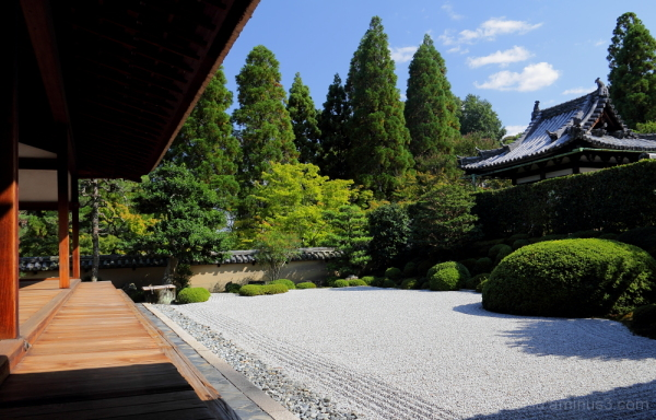 Beautiful garden and the blue sky 一休寺