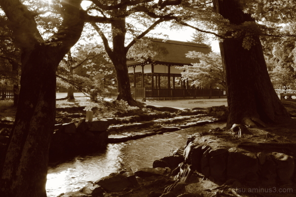 A famous shrine (sepia version) 上賀茂神社