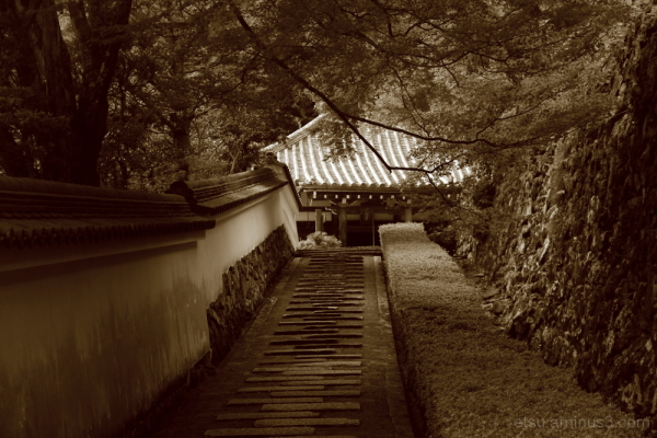 Walking on a path....(sepia version) 善峯寺