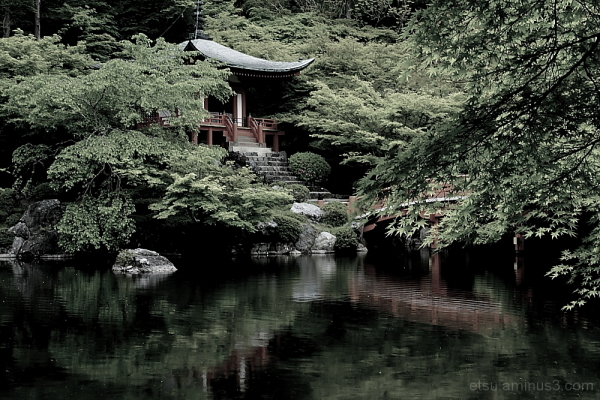 Near a pond(at a temple) 醍醐寺
