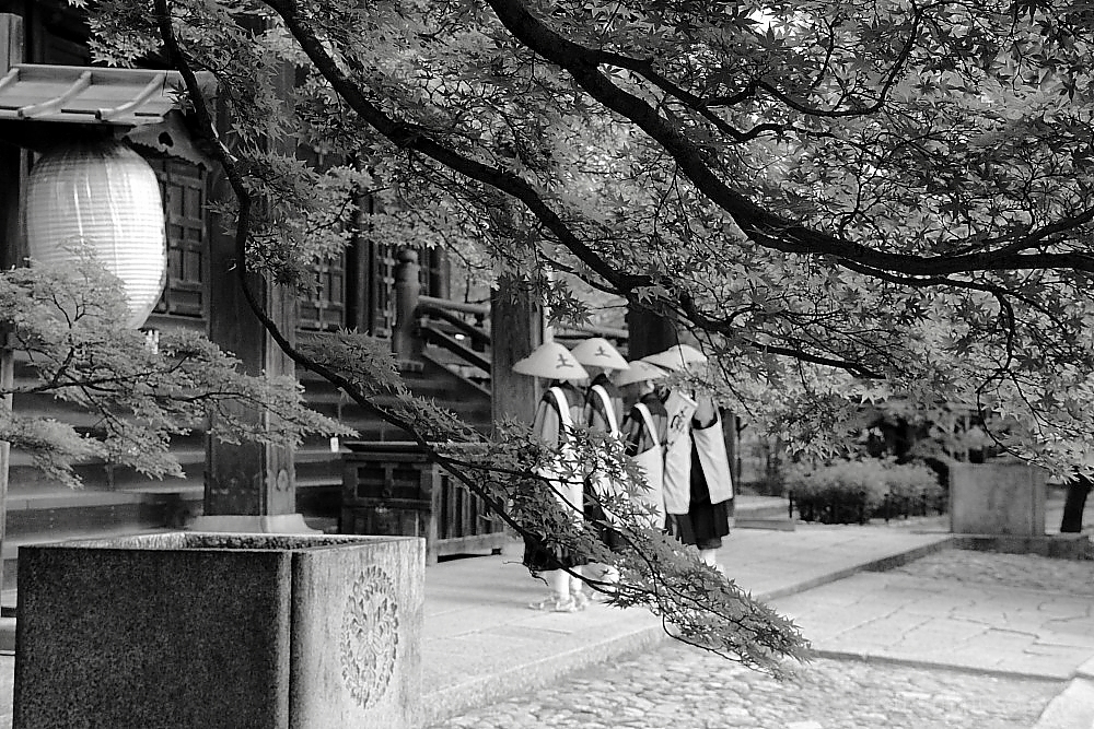 Praying monks #B&W version 真如堂