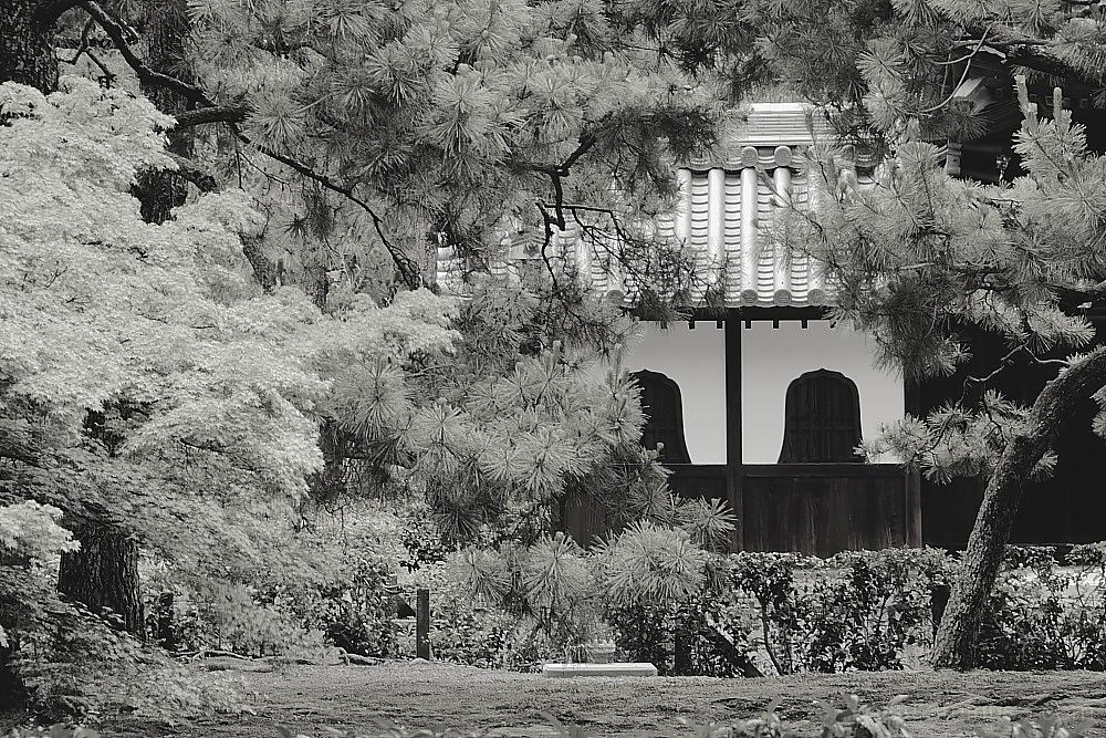 A famous temple 建仁寺