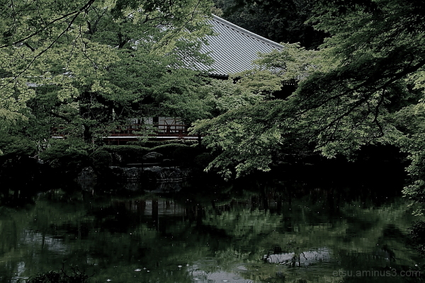 Near a pond (at a temple) 醍醐寺