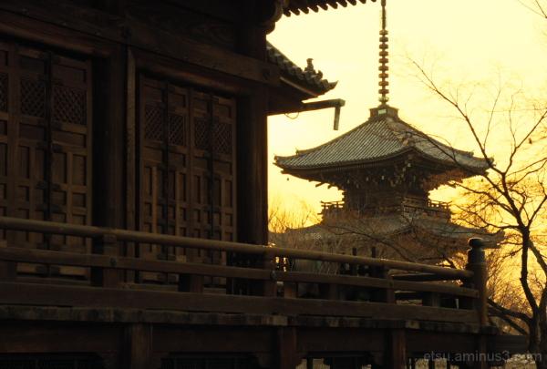 A pagoda and a main hall (toward evening) 真如堂