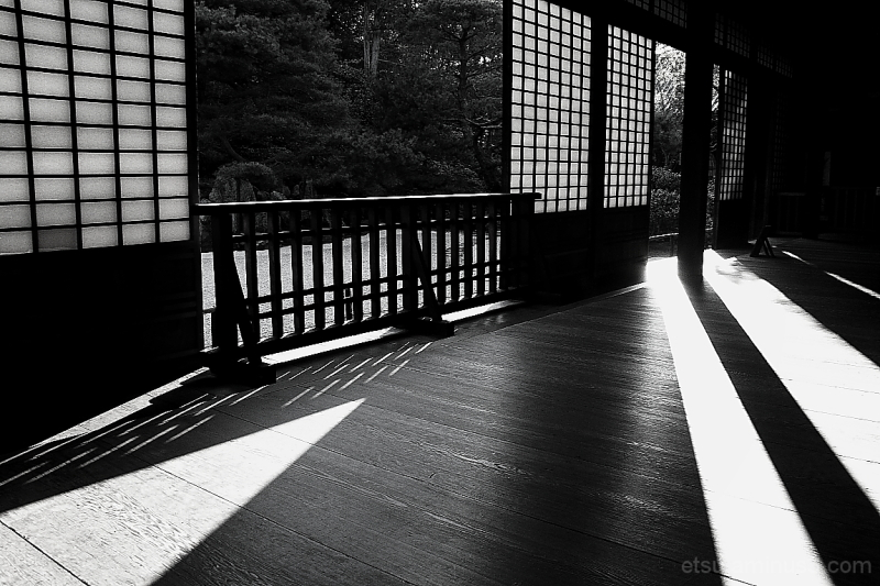 The light and the shadow #B&W version 金地院