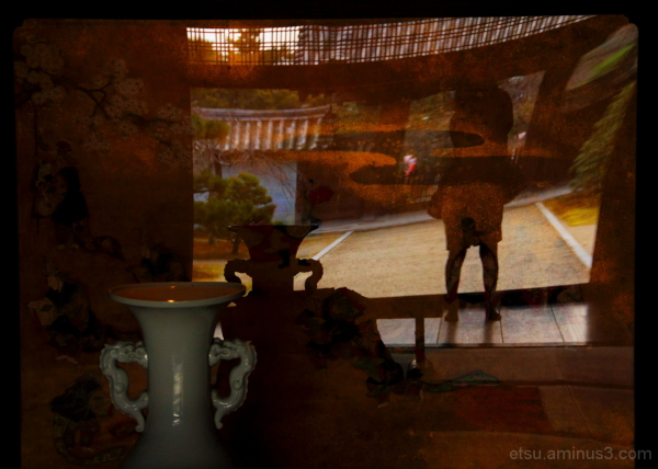 Reflections on the partition (at a temple) 随心院