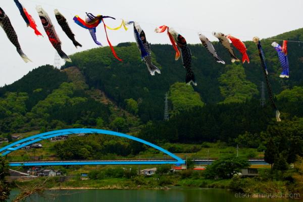 We're flying in the sky 和知