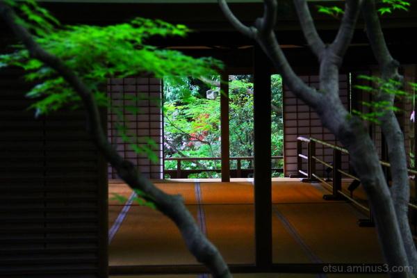 Beyond a room..... 青蓮院