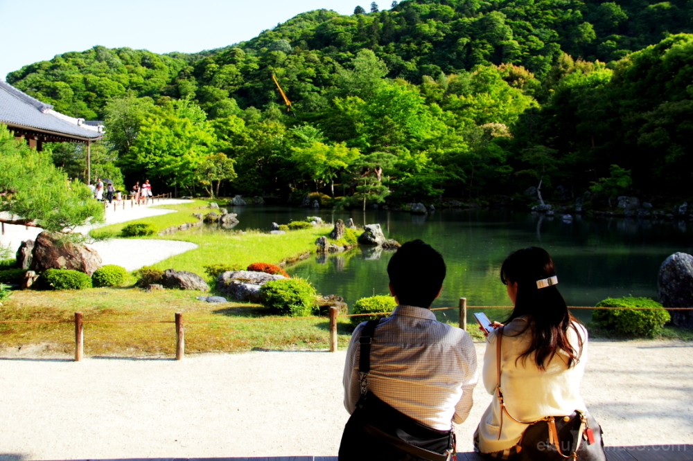 Seeing a garden together 天龍寺