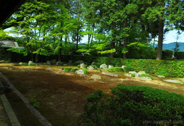 The tranquility 圓通寺