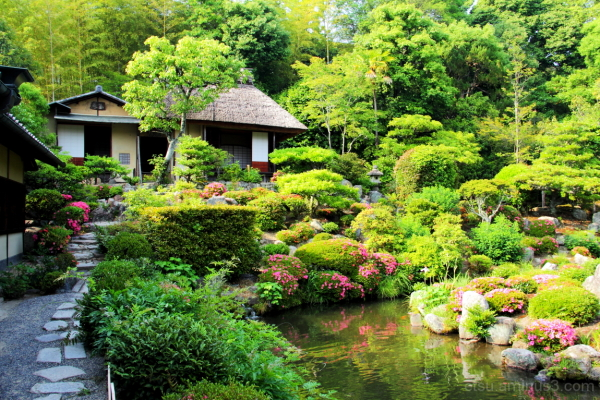 A beautiful day (at a garden) 等持院